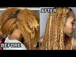 Detangle & Moisturize Dry/Brittle Natural Hair | 10 Day Old Hair