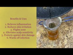 Diy witch hazel extract