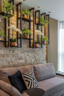 plants. decor 🌱