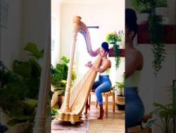 Madison Calley Harp Cover: Because of You Melody by Ne-Yo – YouTube