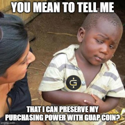 You know the FED is printing trillions of dollars. But there's only 90 million GUAPcoins.