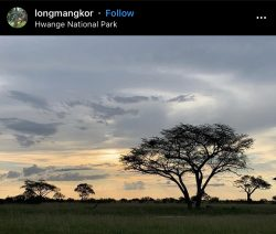 Hwange National Park ?