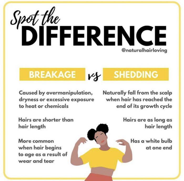 Breakage vs Shedding