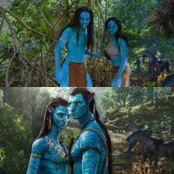 Na'vi costume – James Cameron Avatar – Na'vi – cosplay – cos ...