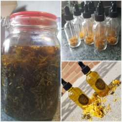 Calendula Infused Oil