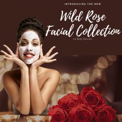 Wild Rose Facial Collection