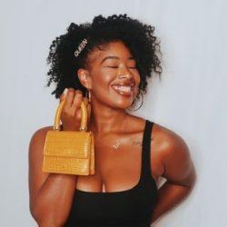 Mini purse and queen hair pin?