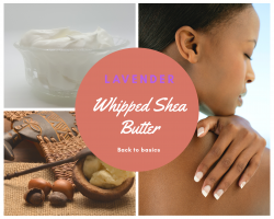whipped Lavender Shea Body Butter