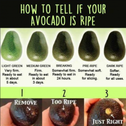 Is my avocado ripe?