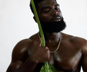 beard, plant, and men image