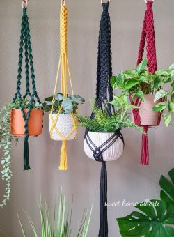 Macrame Plant Hangers in Bold Colors by Sweet Home Alberti