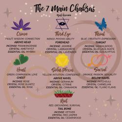 7 Main Chakras