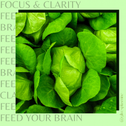 Self Care: Feed Your Brain