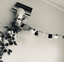 Polaroid photos decor