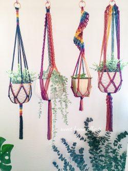 Rainbow plant hangers