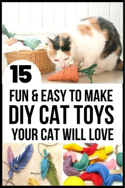 15 EASY DIY CAT TOYS YOU CAN MAKE TODAY