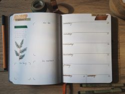 January Weekly Spread ~ Bullet Journal