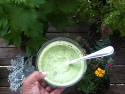 Raw-Mazing Green Starter Soup
