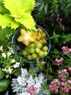 Star Fruit and Green Grapes