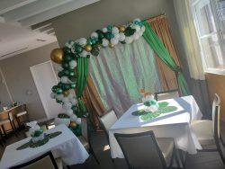 Safari Baby Shower Ballon Backdrop
