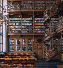 """""""The library is an arena of possibility, opening both a window into the soul and a door on ..."""
