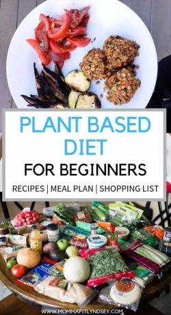 beginners plant based 🌱