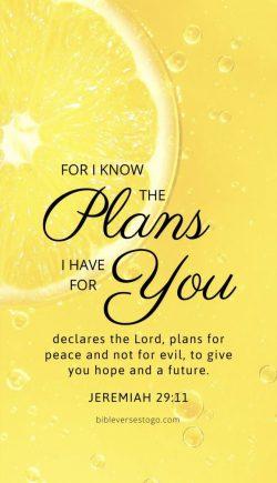 Challenge day 3- Jeremiah 29:11