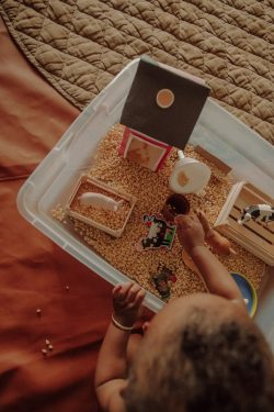 Farm Animal Sensory Bin