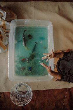Ocean Animal Sensory Bin