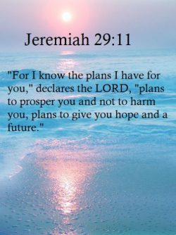 There is a plan!