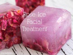 rose ice facial treatment 🌸