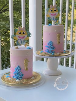 Duo B-day Cakes