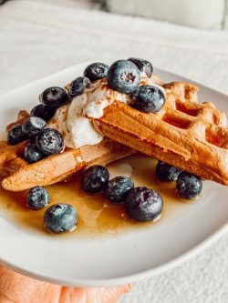 yogurt, blueberries, waffles 🧇