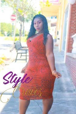 Plus Size Sleeveless Animal Print Dress