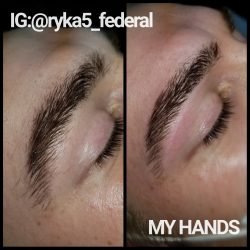 Waxed Brows
