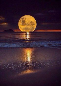 Beauty Full Moon