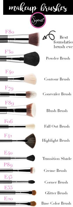 Best Sigma Makeup Brushes