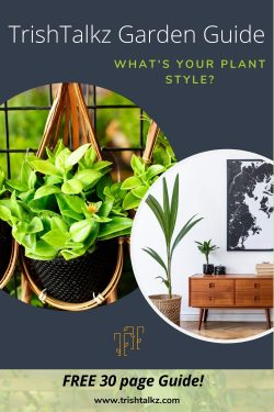 Garden Guide: What's Your Plant Style