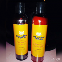 Vegan Shampoo And Conditioner