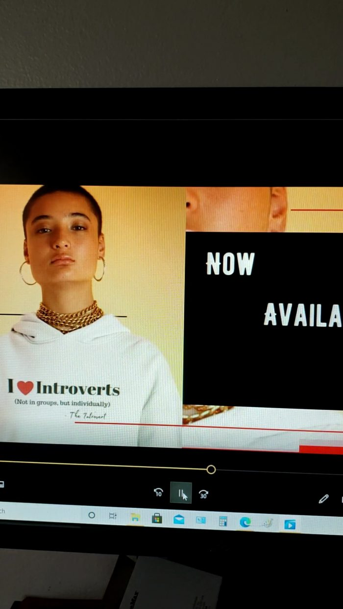 I love Introverts Hoodie