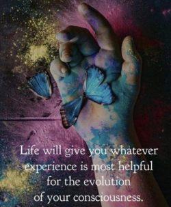 Seek Higher Consciousness