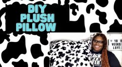 DIY PLUSH PILLOW