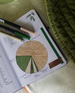 January Finances/Budget ~ Bullet Journal