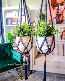 Rainbow Plant Hangers by Sweet Home Alberti 🌈