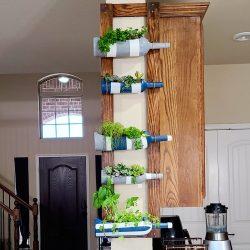 Diy Succulent/ Herb garden
