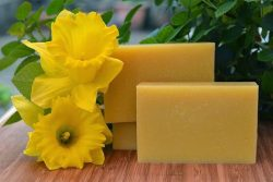 daffodil soap recipe using fresh daffodil flowers.