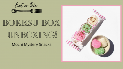 unboxing Japanese mochi snack box