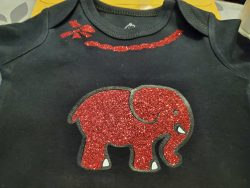 DST Baby T Shirt
