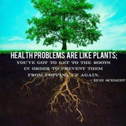 To heal your body you have to start at the root your core aka your gut