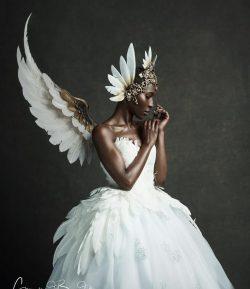 Angel Fae